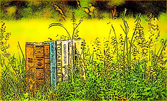 Красота книги