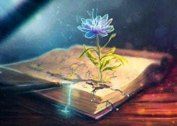 книги и мысли