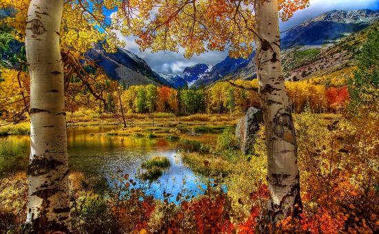 Любовь моя, осень…