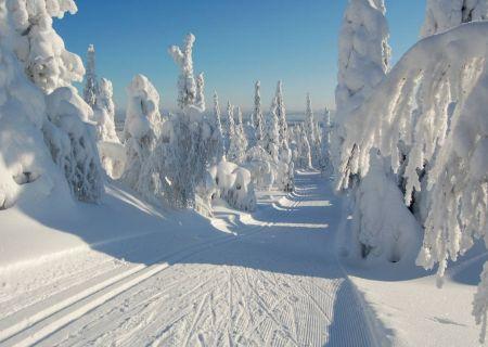 Но тем не менее снег — это волшебство