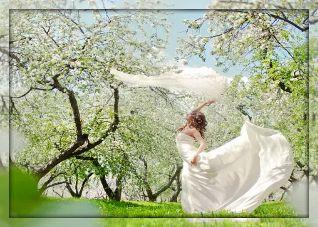 Весной во сне приснилось счастье мне.