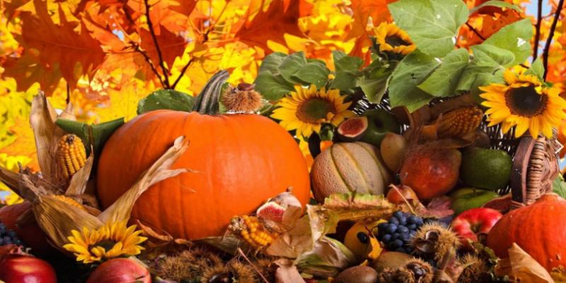 Осень украшает себя яркими серьгами из гроздьев рябины и винограда,