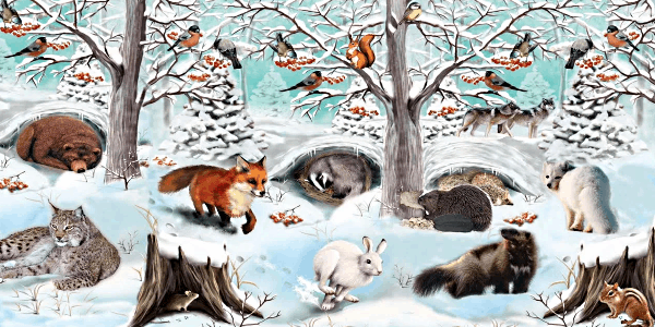 Животные, засыпающие на зиму, называются зимоспящими