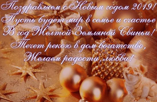 Поздравления с Новым годом 2019 Свиньи стихи и картинки