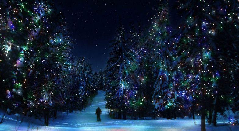 Шел по лесу Дед Мороз Мимо кленов и берез,