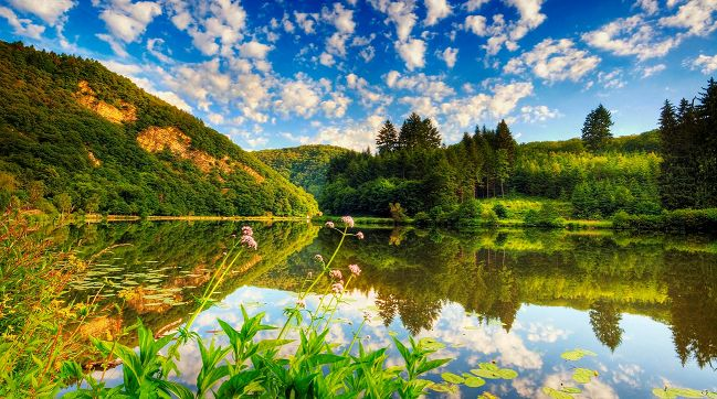 Лето — это печь, в которой Господь обжигает великолепные краски осени.