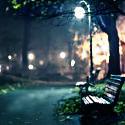 Глупый ищет, как преодолеть одиночество, мудрый – находит, как насладиться им. Артур Шопенгауэр