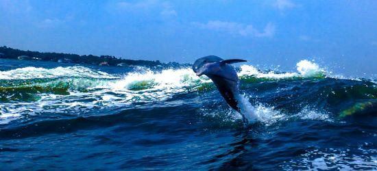 Море и небо — два символа бесконечности. Джузеппе Мадзини