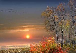Бунин стихи про осень