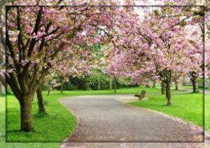 """Стихотворение""""Весна"""""""