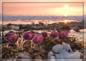 Стихи «Весна, весна, пора любви...»