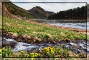 "Стих ""Весна на дворе"" Автор: Афанасий Фет"