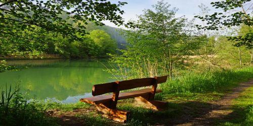 «Тихо в озере струится» автор: Федор Тютчев