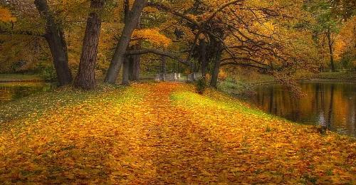 Самые сложные люди похожи на осень