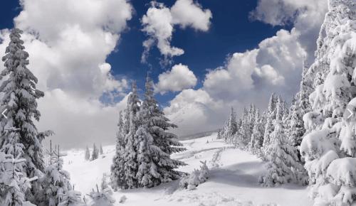 Поздравляю с началом зимы, поистине прекрасной и очаровательной