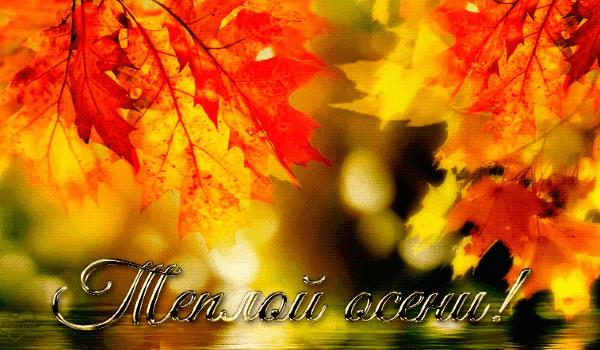 Красивые цитаты про осень для Инстаграма