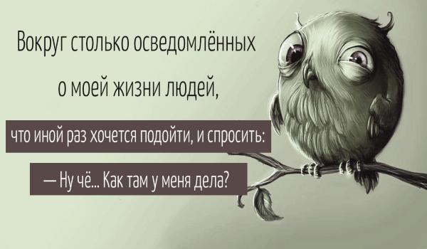Избыток ума - это и есть его недостаток.